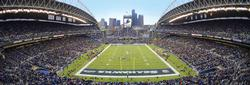 Seattle Seahawks Sports Panoramic Puzzle