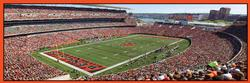 Cincinnati Bengals Sports Panoramic Puzzle