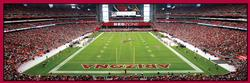 Arizona Cardinals Sports Panoramic