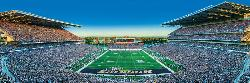 Washington Sports Panoramic Puzzle