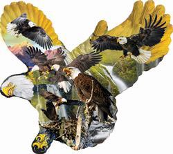 Lights of the Eagles Nature Jigsaw Puzzle