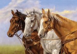 Three of a Kind (Collector) - Scratch and Dent Horses Jigsaw Puzzle