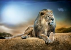 His Majesty Lions Jigsaw Puzzle