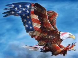 American Glory Eagles Jigsaw Puzzle