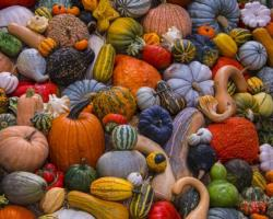 Autumn Harvest Halloween Jigsaw Puzzle
