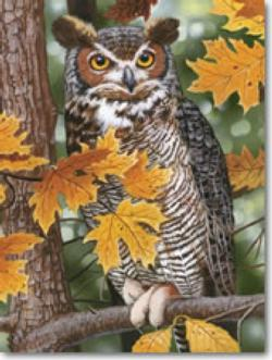 Autumn Owl Nature Jigsaw Puzzle