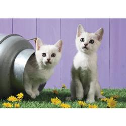 Cat Sisters Kittens Jigsaw Puzzle