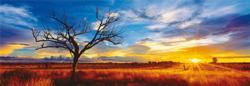 Desert Oak Sunrise/Sunset Jigsaw Puzzle