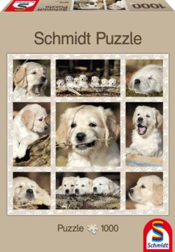 Dog Kids Collage Jigsaw Puzzle
