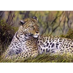 King of the Savanna Tigers Jigsaw Puzzle