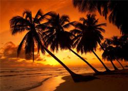 Tropical Sunset Sunrise / Sunset Jigsaw Puzzle