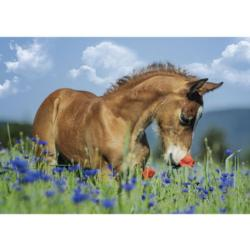 Welsh Pony Fields Jigsaw Puzzle