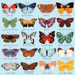 Butterflies of North America Butterflies and Insects Jigsaw Puzzle
