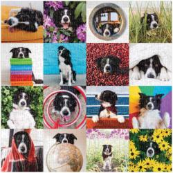 Momo The Dog Collage Jigsaw Puzzle