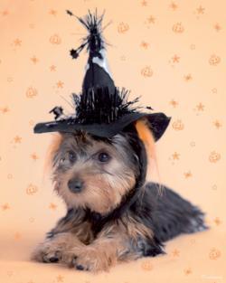 Spooky Pooch Halloween Jigsaw Puzzle