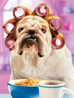 Dog in Curlers (Avanti) Food and Drink Large Piece