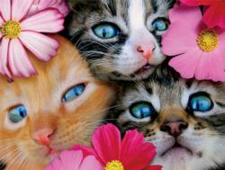 Kittens in Flowers (Avanti) Cats Large Piece