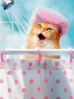 Shower Cat (Avanti) Cats Large Piece