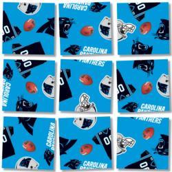 Carolina Panthers NFL Football Non-Interlocking Puzzle
