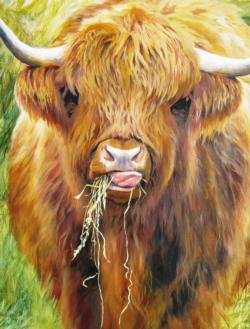 Highland Cow Animals Jigsaw Puzzle