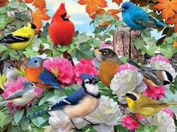 Garden Birds Collage Impossible Puzzle