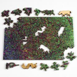 Northern White Rhino Science One of a Kind Puzzle