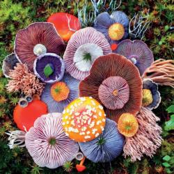 Agaric (Mushrooms) Food and Drink Jigsaw Puzzle