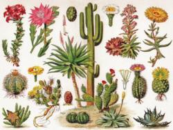 Cacti - Cactus Jigsaw Puzzle