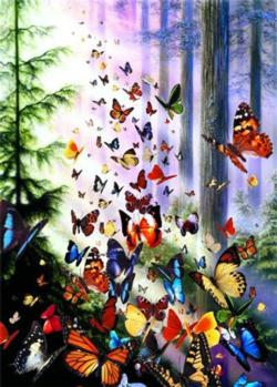 Butterfly Woods Nature Jigsaw Puzzle