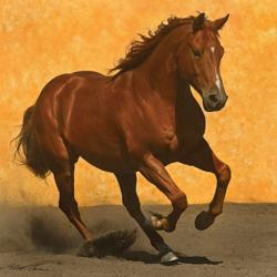 Adobe Run III Horses Jigsaw Puzzle