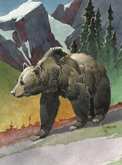 NWF - Bear Bears Jigsaw Puzzle