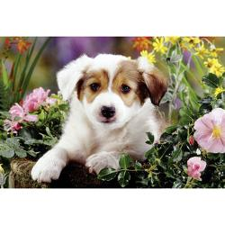 Baboo Dog Baby Animals Children's Puzzles