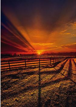 The Evening Stillness Sunrise/Sunset Jigsaw Puzzle