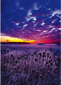 Sunrise Outdoors Jigsaw Puzzle