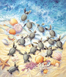 Green Turtle Hatchlings Summer Jigsaw Puzzle