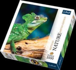 Lizard (Nature) Reptiles and Amphibians Jigsaw Puzzle
