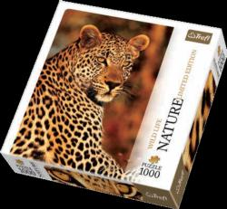 Leopard (Nature) Jungle Animals Jigsaw Puzzle