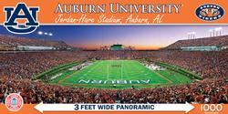 Auburn University Sports Panoramic