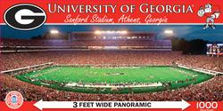 University of Georgia Sports Panoramic