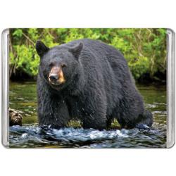 American Black Bear (Mini) Miniature Puzzle