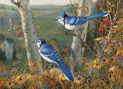 Blue Jays Birds Jigsaw Puzzle