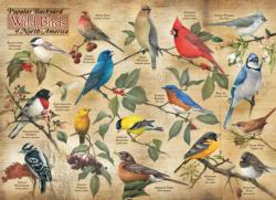 Popular Backyard Wild Birds of N.A. Birds Jigsaw Puzzle