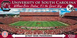 University of South Carolina Sports Panoramic