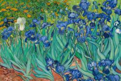 Irises in Garden by Van Gogh People