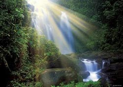 Waterfall (Magic Forests) Waterfalls Jigsaw Puzzle