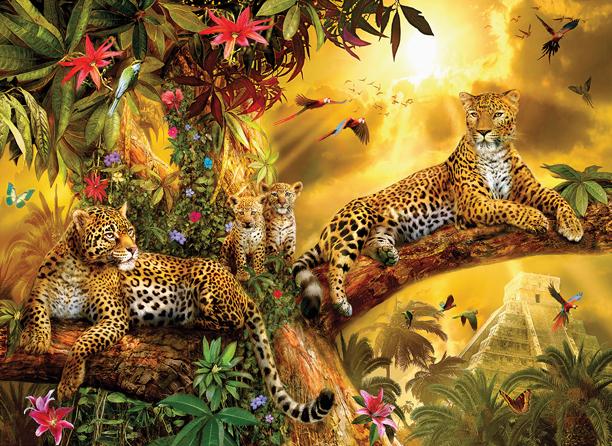 Jungle Jaguars 500+
