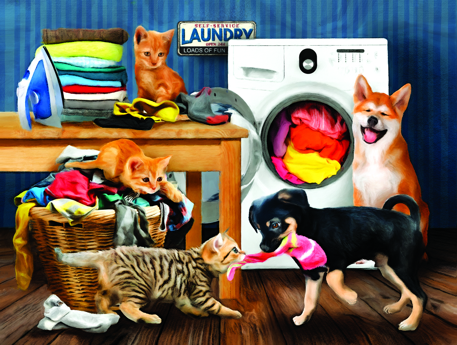 Laundry Room Laughs