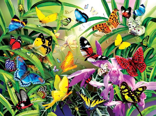 Tropical Butterflies 1000