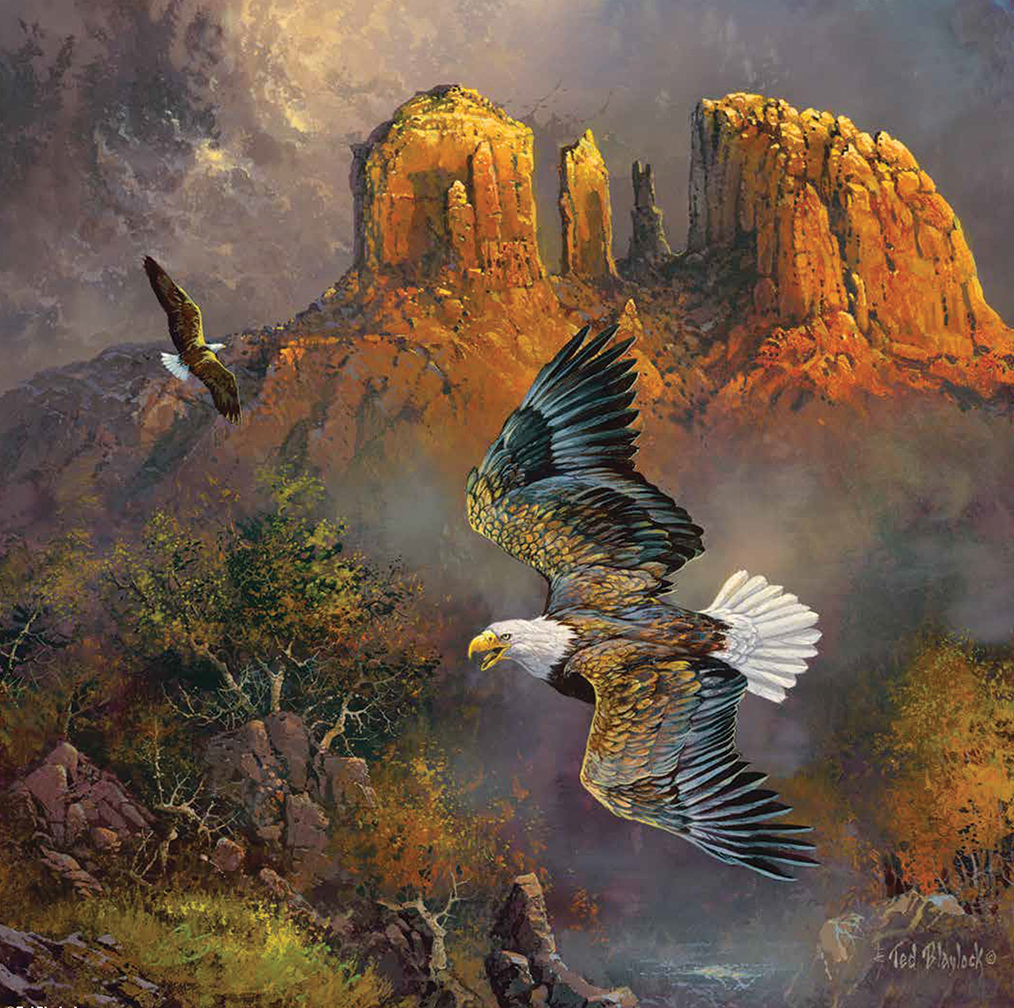 Sedona Eagles 500