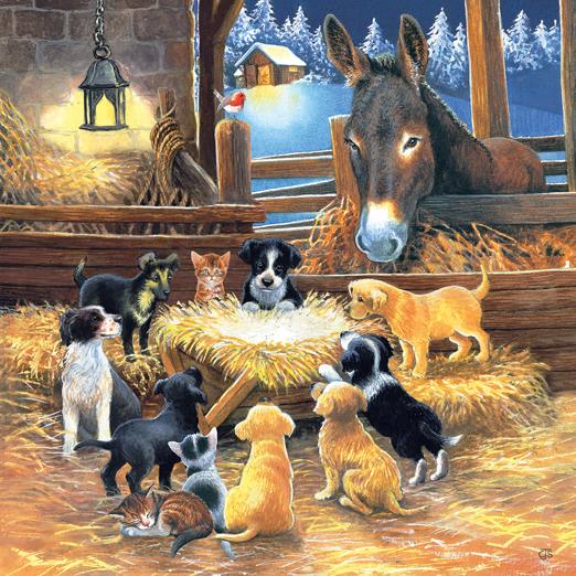 Barnyard Nativity